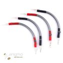 Wireworld Prepájací kábel Bi-Wire Equinox