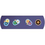 Wireworld Kábel USB 3.0 Ultraviolet 8 (U3AM) A-microB