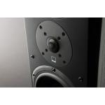 Reproduktor stĺpový SVS Prime Pinnacle